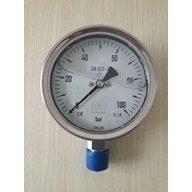 đồng hồ đo áp suất 0-100bar