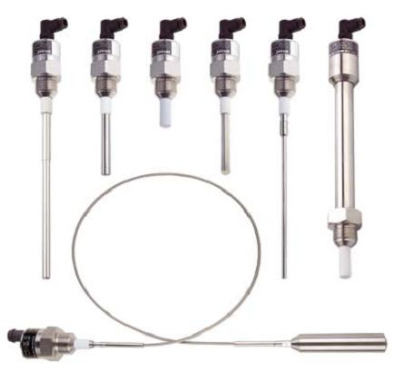 Cảm biến báo mức chất rắn điện dung DLS27