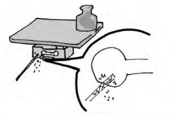 Hiệu chỉnh tải trọng loadcell