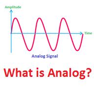 Analog là gì